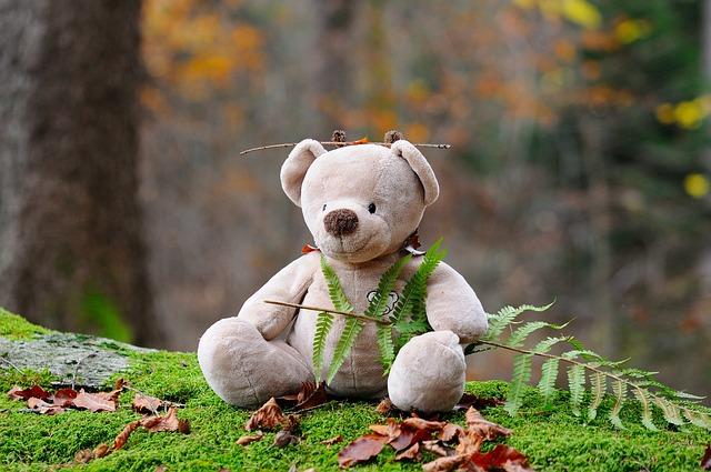 teddy-bear-524251_640